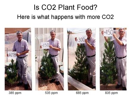 CO2_is_a_benefactor_not_a_pollutant5